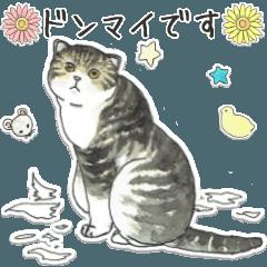 [LINEスタンプ] 水彩ネコのやさしい言葉