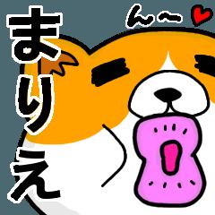 [LINEスタンプ] まりえより愛を込めて(名前スタンプ・猫)
